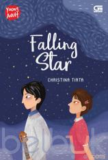 Young Adult: Falling Star