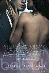 Their Marriage Agreement: The Wedlock Series