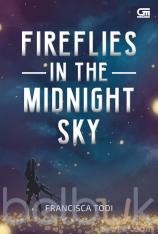 Fireflies in the Midnight Sky