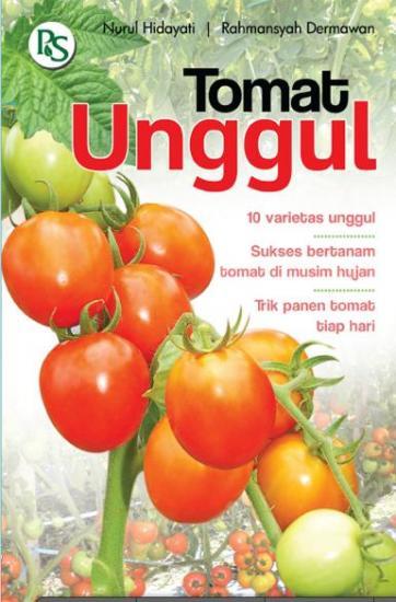Tomat Unggul 10 Varietas Unggul Nurul Hidayat Rahmansyah